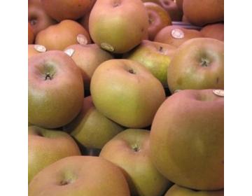 Pomme Canada grises