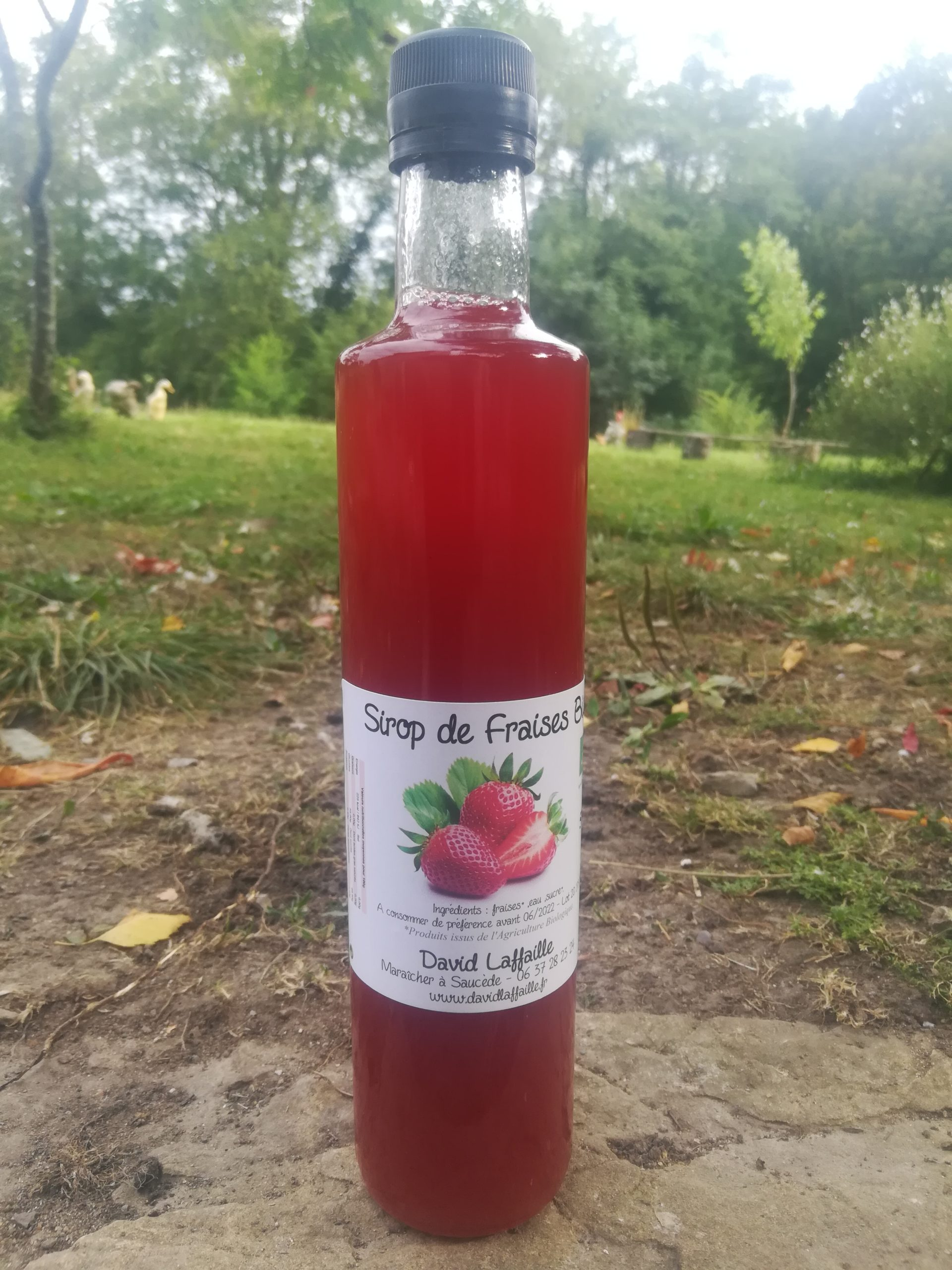 Sirop de fraises Bio